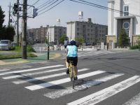 中原街道を渡ったら自転車道に復帰します。