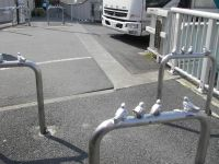 町田駅付近の車止め