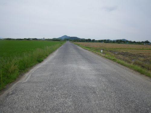 田んぼの中の一本道