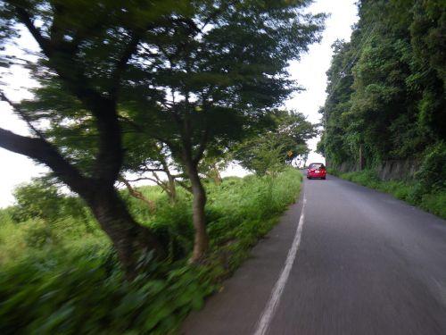 長命寺先の道