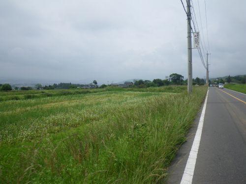 松本への農道