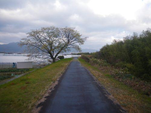 草津川自転車道路