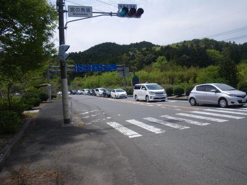 サファリ渋滞